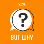 but-why-artwork-vpr-jory-raphael-20160401